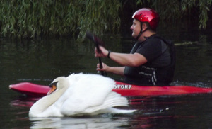 This swan was happy to express its revolutionary nature against humanity by attacking a group of canoeists infringing its territory in Colchester.
