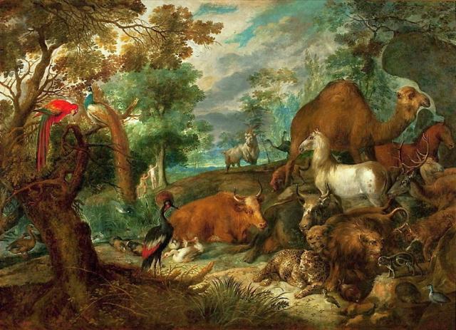 animal intelligence, anthropocentrism,